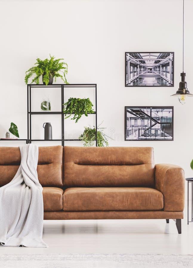 Grå färgfilt på den bruna lädersoffan i ljus modern lägenhet med industriella affischer på väggen och växterna royaltyfri bild