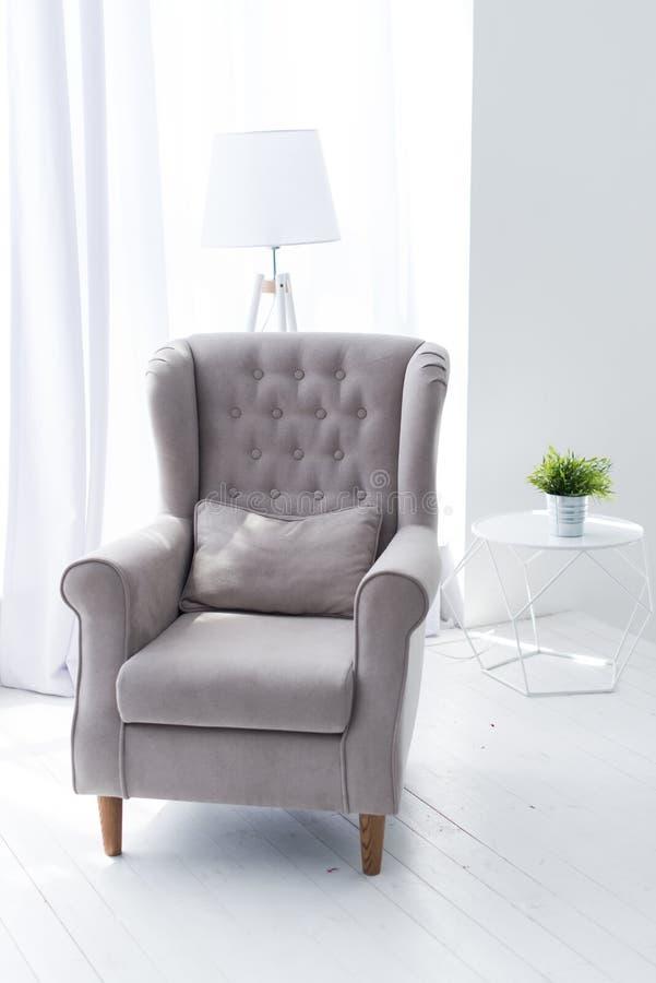 Grå fåtölj i rummet Åtlöje för hemmiljövägg upp med den gråa sammetfåtöljen, lampan och växten i vas på den vita backgrouen arkivfoto