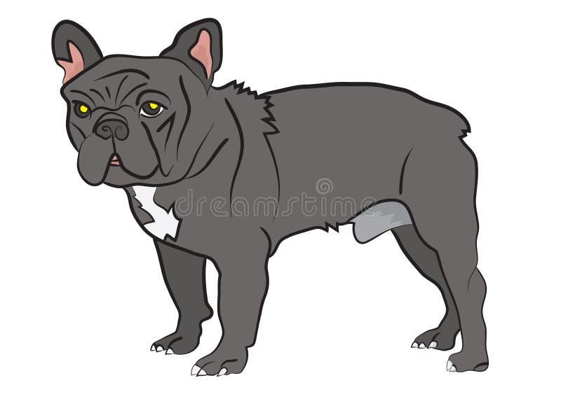 Grå hund vektor illustrationer