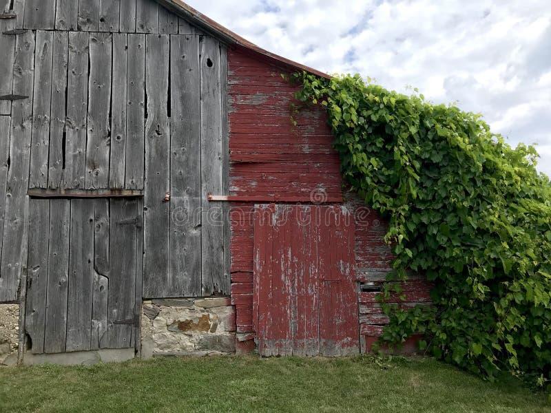 Grå lantlig ladugård fotografering för bildbyråer