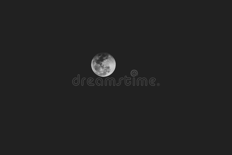 Grå måne i den mörka himlen stock illustrationer