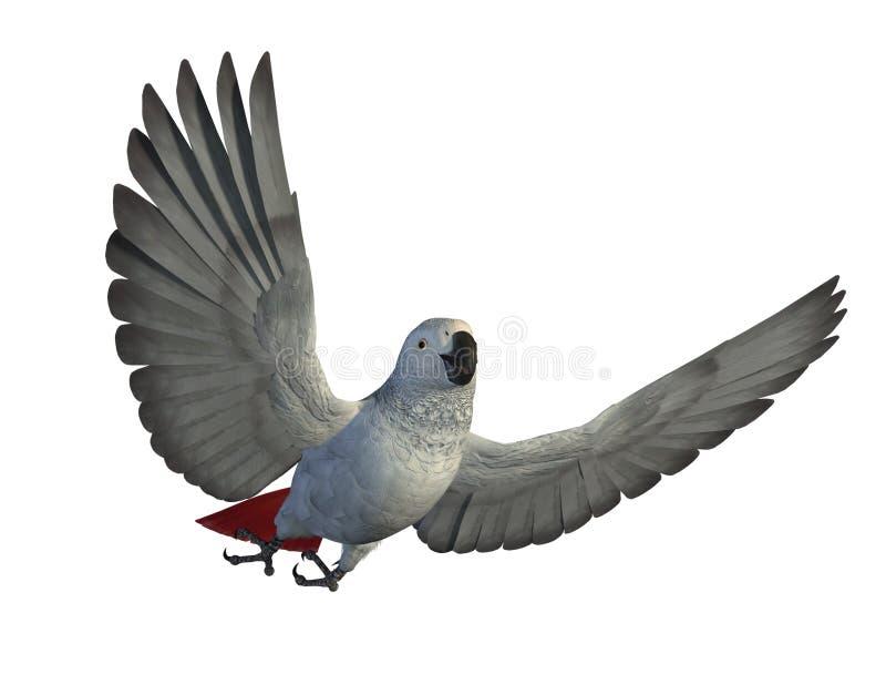 grå papegoja för afrikanskt flyg stock illustrationer