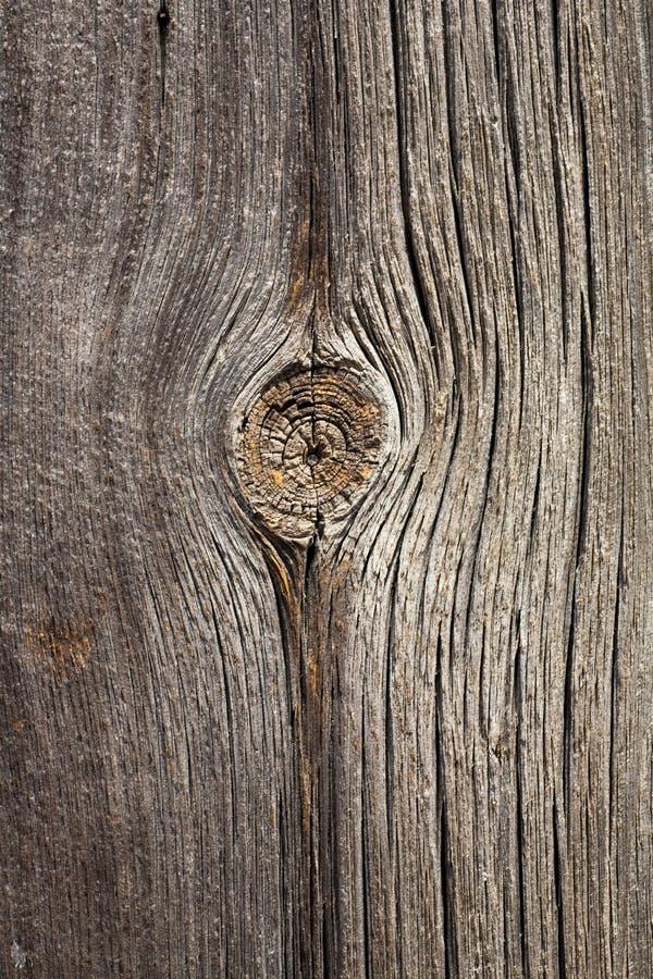 Grå sömlös bakgrund för gammal wood textur royaltyfria foton