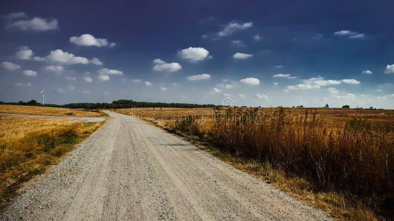 Grå väg mellan brunt gräs under vitt moln Sky royaltyfri fotografi