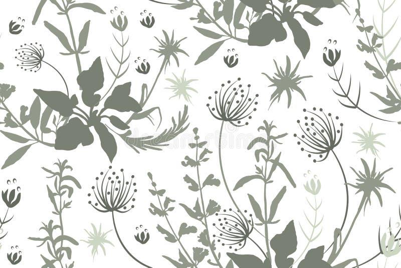 Gråa konturer av blommor och örter royaltyfri illustrationer