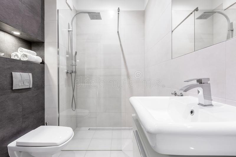 Grått och vitt badrum med duschen royaltyfri bild