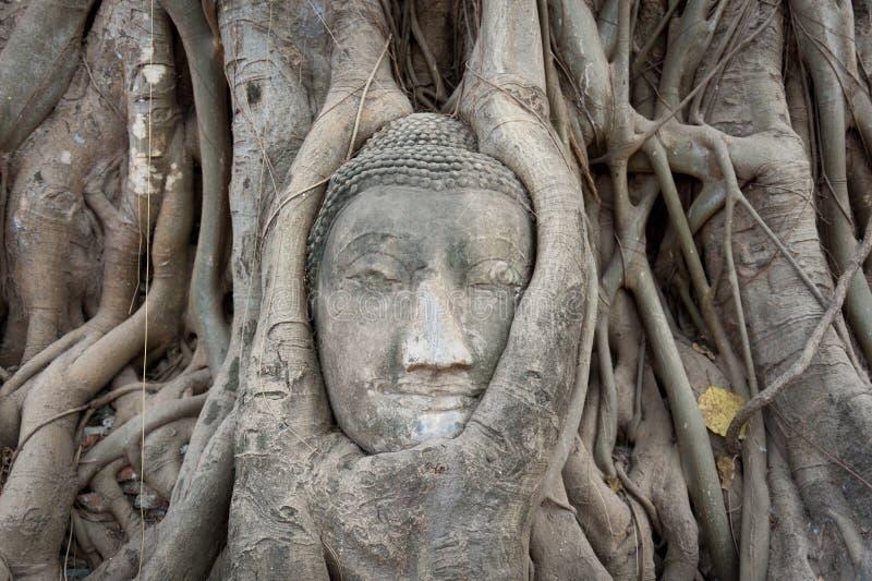 Grès Bouddha photos libres de droits