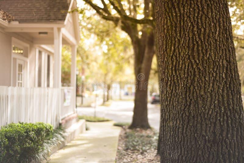Grêlez le village de plantation à Gainesville la Floride un beau jour ensoleillé photographie stock