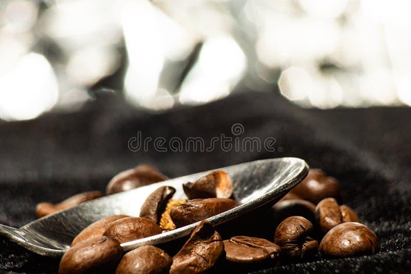 Gr?es do caf? na colher no fundo do bokeh foto de stock