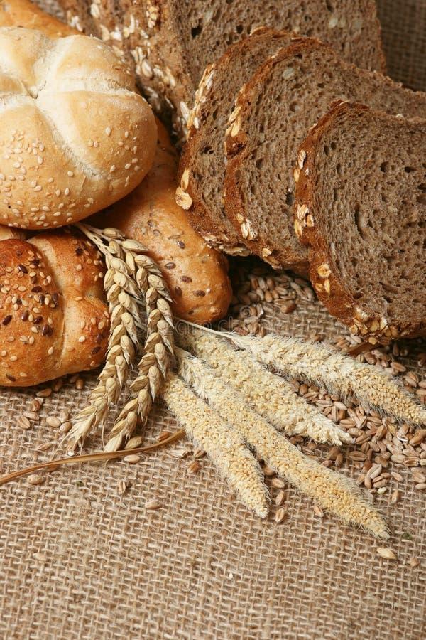 Grões do pão e do trigo fotos de stock