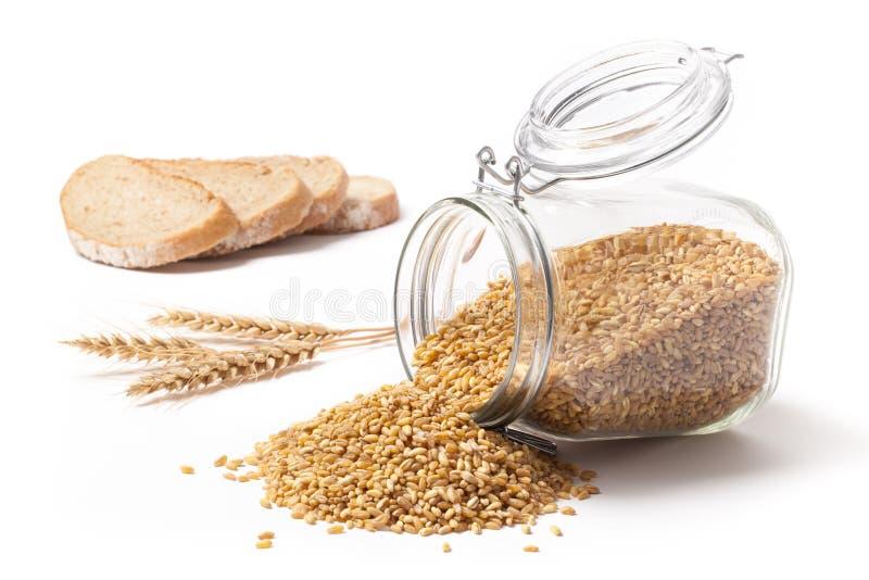 Grões do pão integral e do trigo imagens de stock