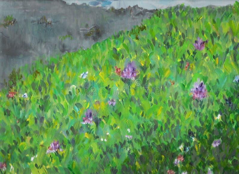grön äng för gräs arkivbild