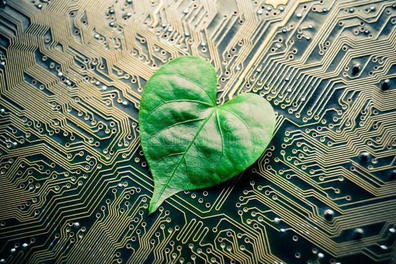 Grön IT arkivbilder