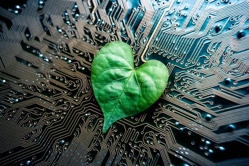 Grön IT royaltyfria bilder