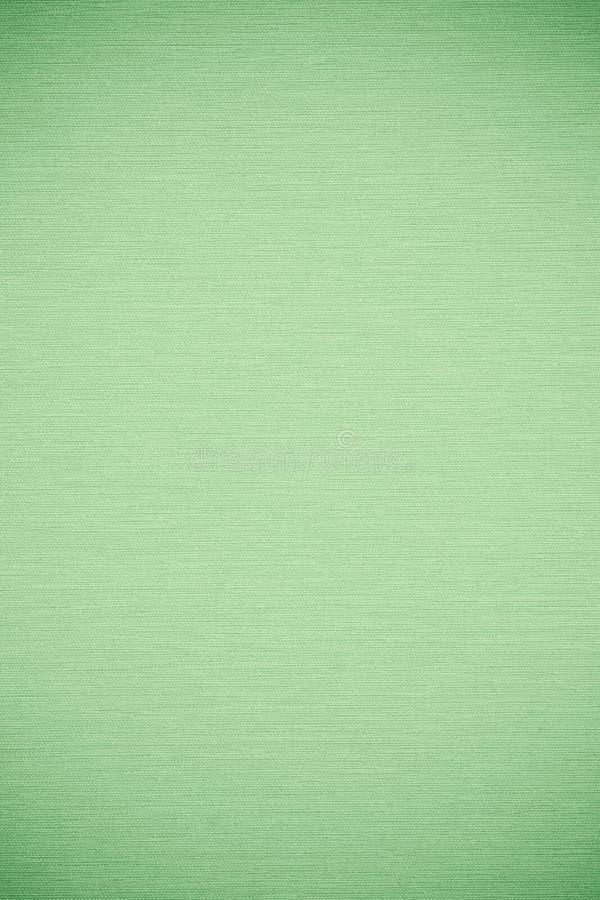 Grön abstrakt cnvasbakgrund royaltyfri foto