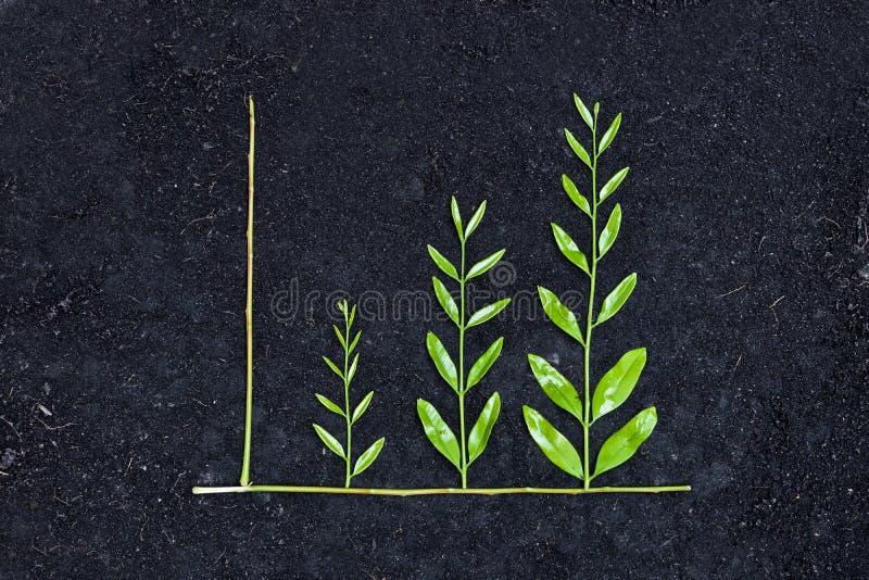 Grön affärsgraf arkivfoto