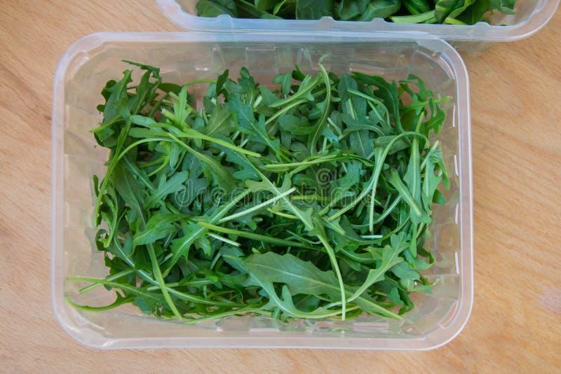 Grön arugula lämnar på träskärbräda Ny rucola i köket i det plast- magasinet, italiensk smaktillsats Sund livsstil royaltyfria foton