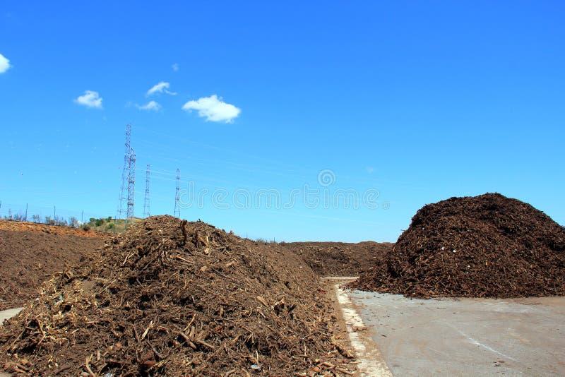 grön avfalls royaltyfria bilder