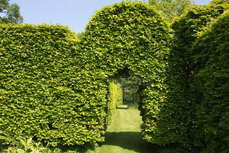Grön båge i trädgård royaltyfri foto