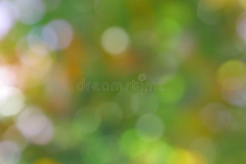 Grön bakgrund för sommar - suddighetsmaterielfoto arkivfoton