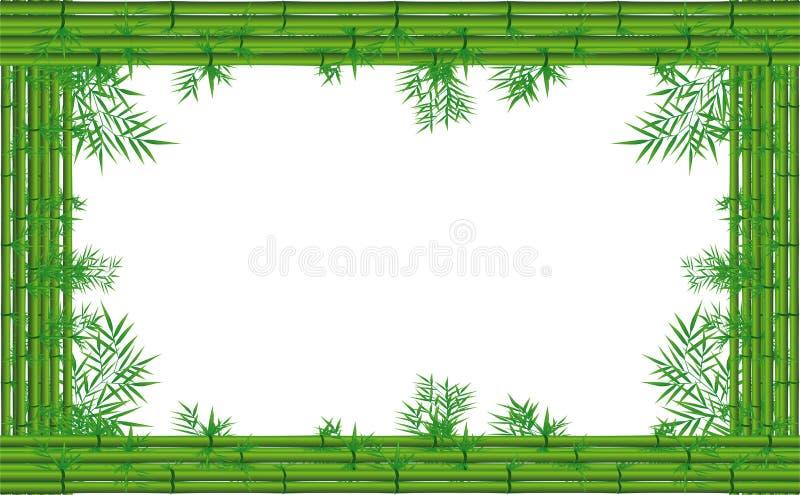 Grön bambu vektor illustrationer