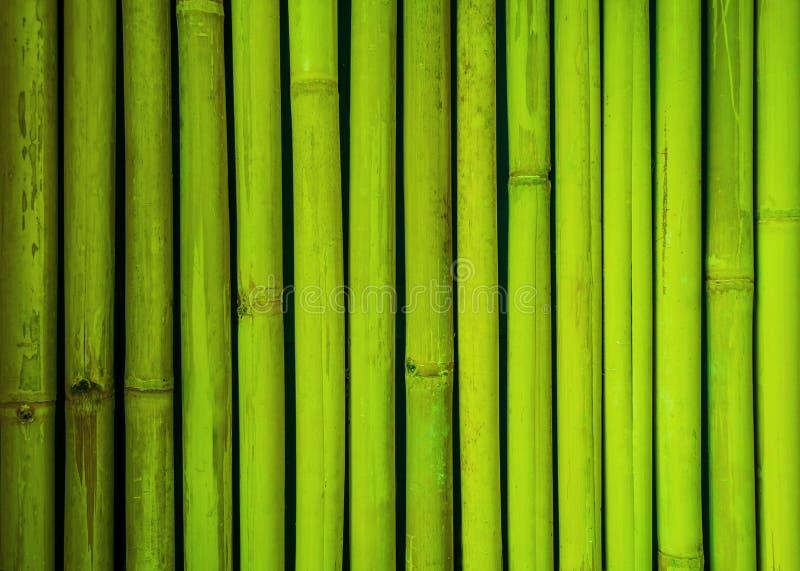 Grön bambustakettextur, bambubakgrund, texturbakgrund, bambutextur arkivfoto
