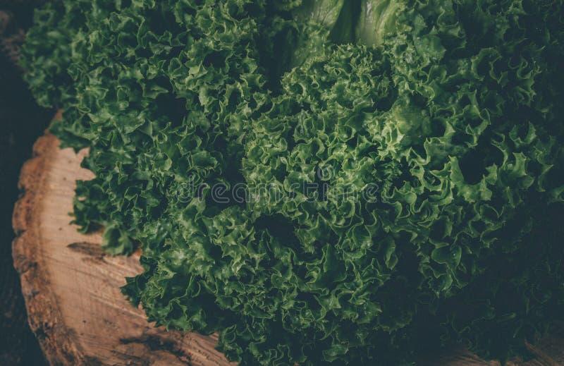 Grön batavia grönsallatsallad på träbakgrund tonat fotografering för bildbyråer