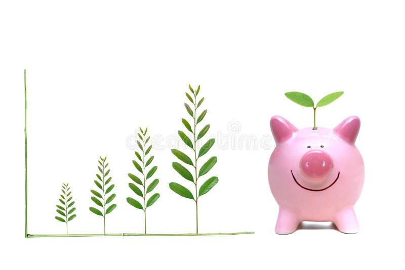 Grön besparing royaltyfria foton