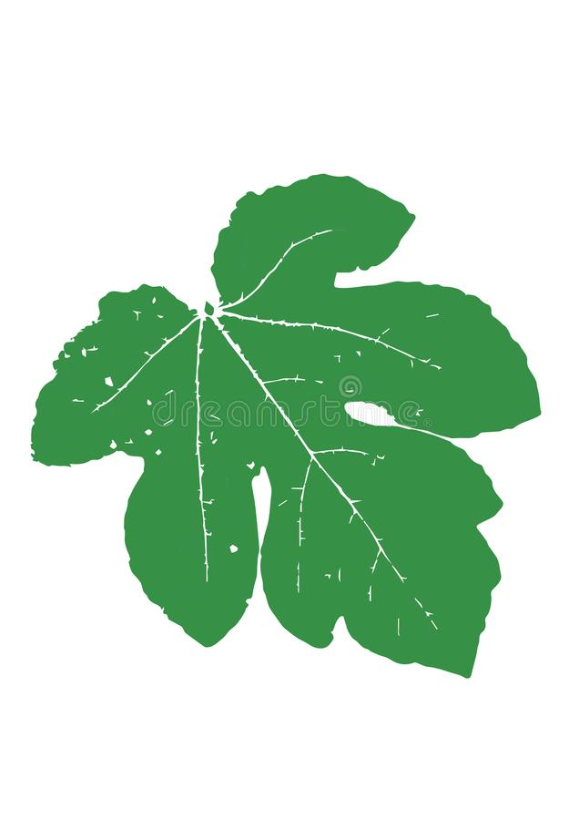 Grön bladvektor royaltyfri illustrationer