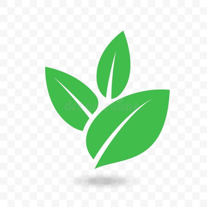 Grön bladvektorsymbol för strikt vegetarian, bio ecodesign vektor illustrationer