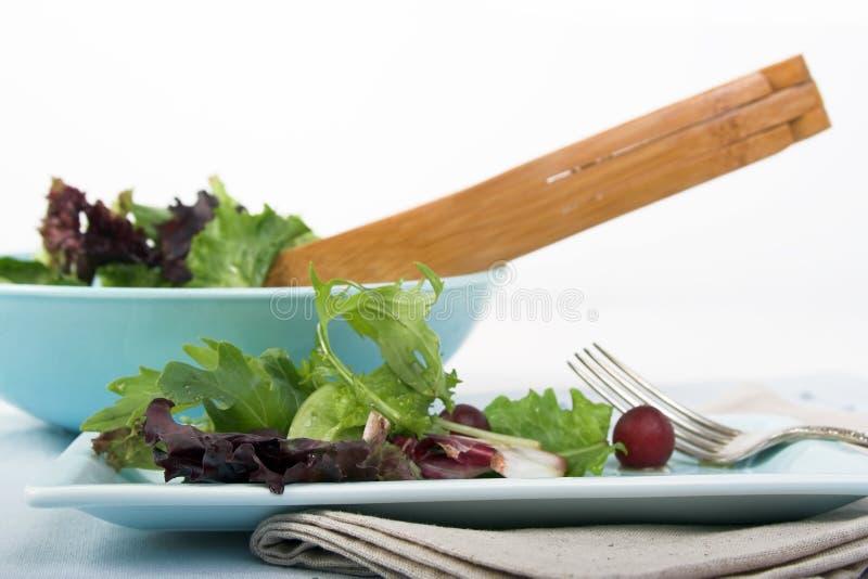 grön blandad sallad arkivfoto