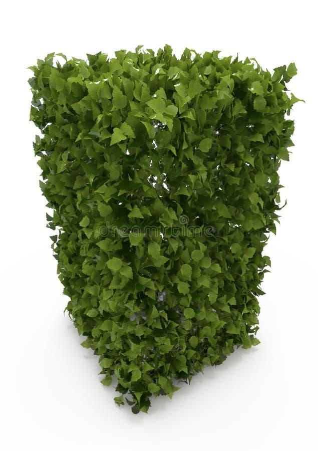 Grön buske vektor illustrationer