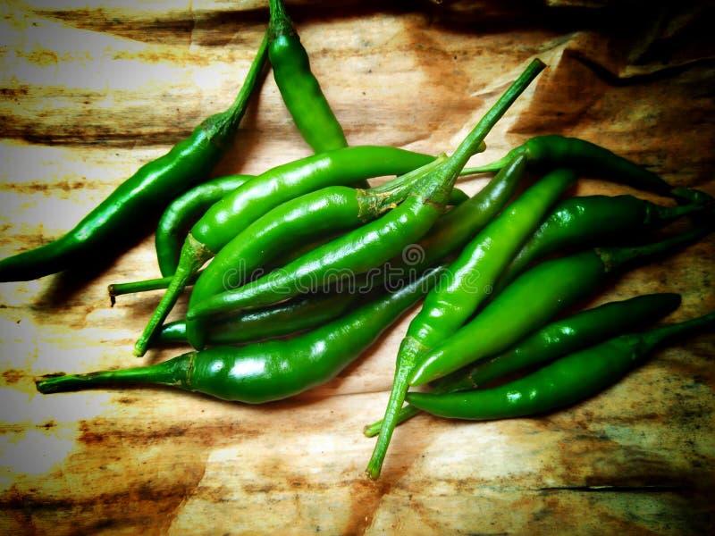 grön chili royaltyfria bilder