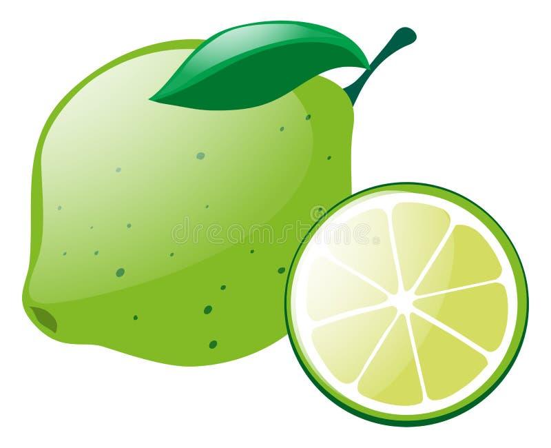 Grön citron med skivan vektor illustrationer