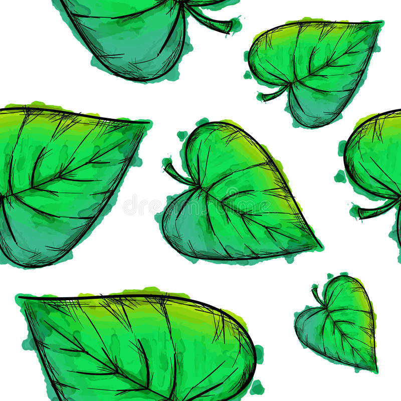 Grön Cordate sidavattenfärgmodell vektor illustrationer