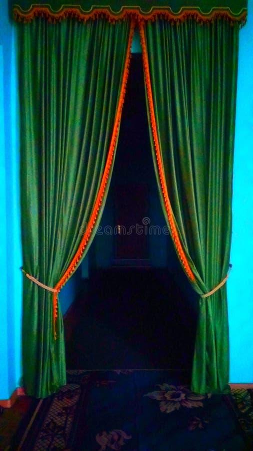 Grön dörr till mörker royaltyfri foto