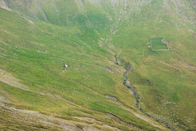 Grön dal i Carpathian berg royaltyfria foton