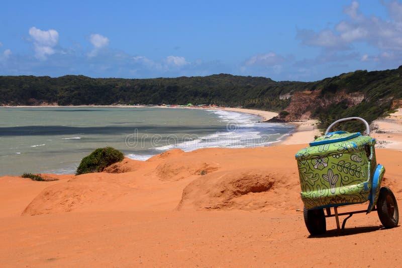 Grön dekorerad kylare i Brasilien arkivfoton