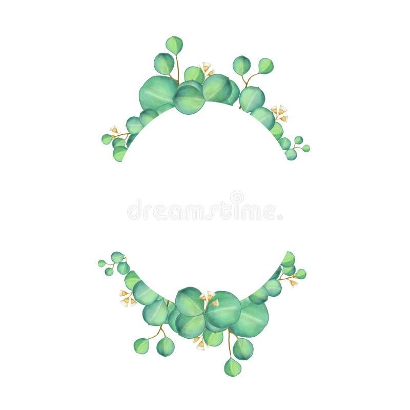 Grön design för eukalyptuskortvattenfärg royaltyfri illustrationer