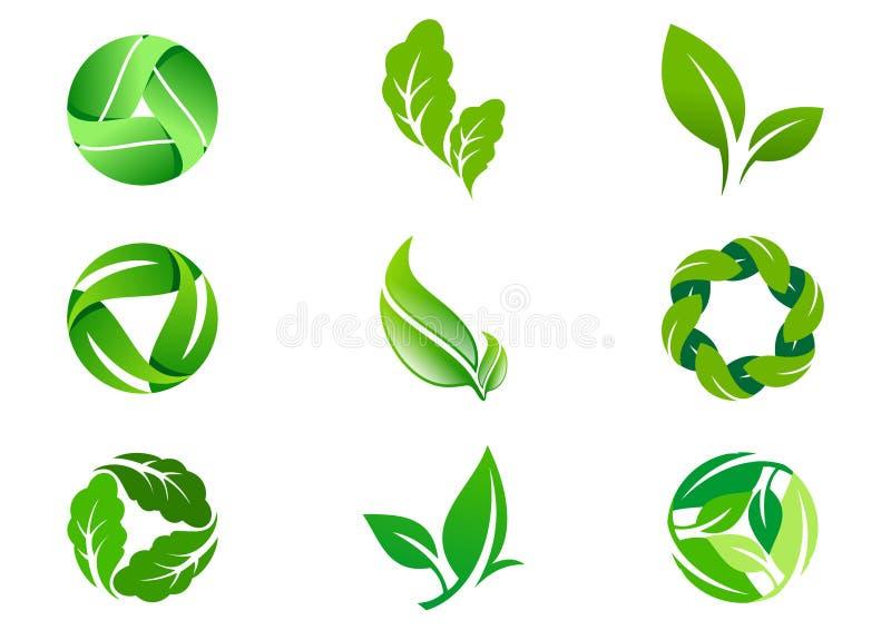 Grön design och symbol för bladvektorlogo vektor illustrationer