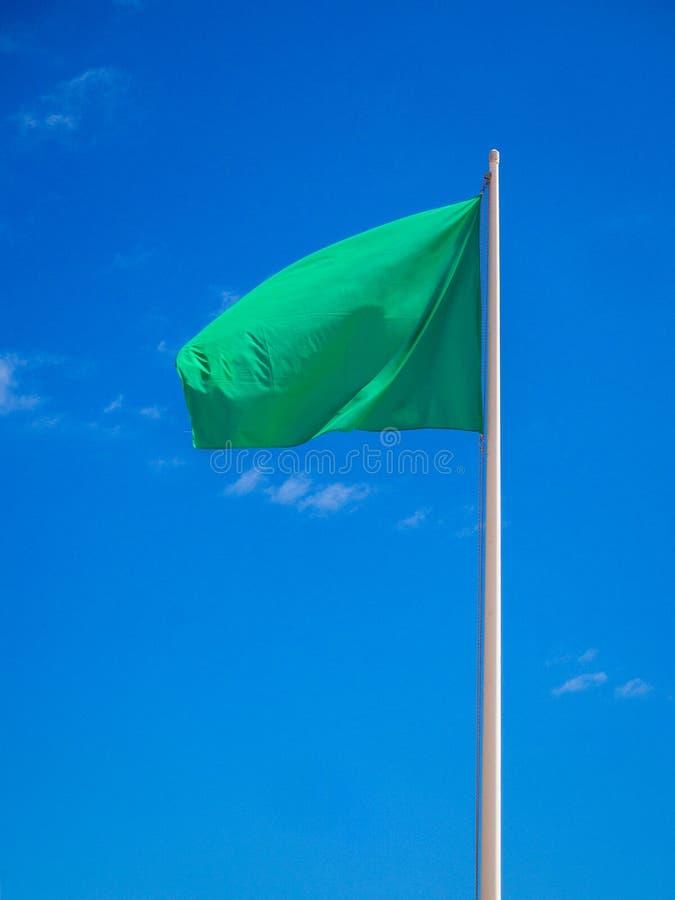 Grön flagga isolerat vinka arkivfoto