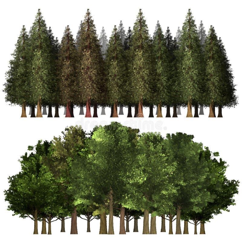 Grön Forrest trädbakgrund vektor illustrationer