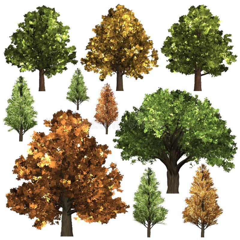 Grön Forrest trädbakgrund illustration 3d royaltyfri illustrationer