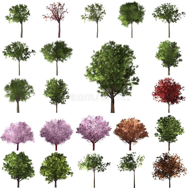 Grön Forrest trädbakgrund Vit isolatbakgrund och psd för lager royaltyfri illustrationer