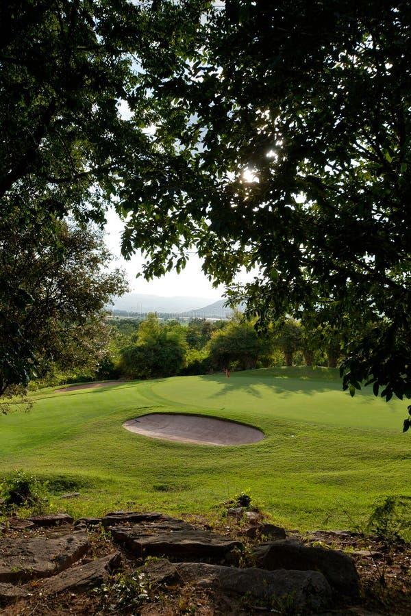 Grön gräs och golfbana arkivbilder