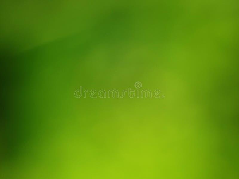 Grön gräsblurbakgrund royaltyfria foton