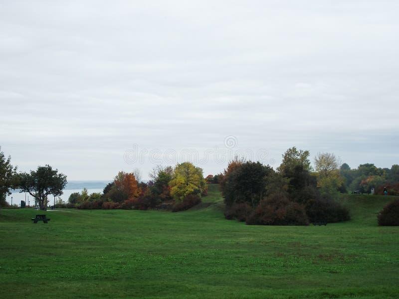 Grön gräsmatta, stad parkerar, hösten, Quebec, Kanada royaltyfri bild