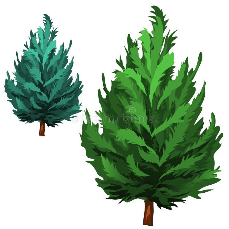 Grön gran i tecknad filmstil på vit bakgrund vektor illustrationer