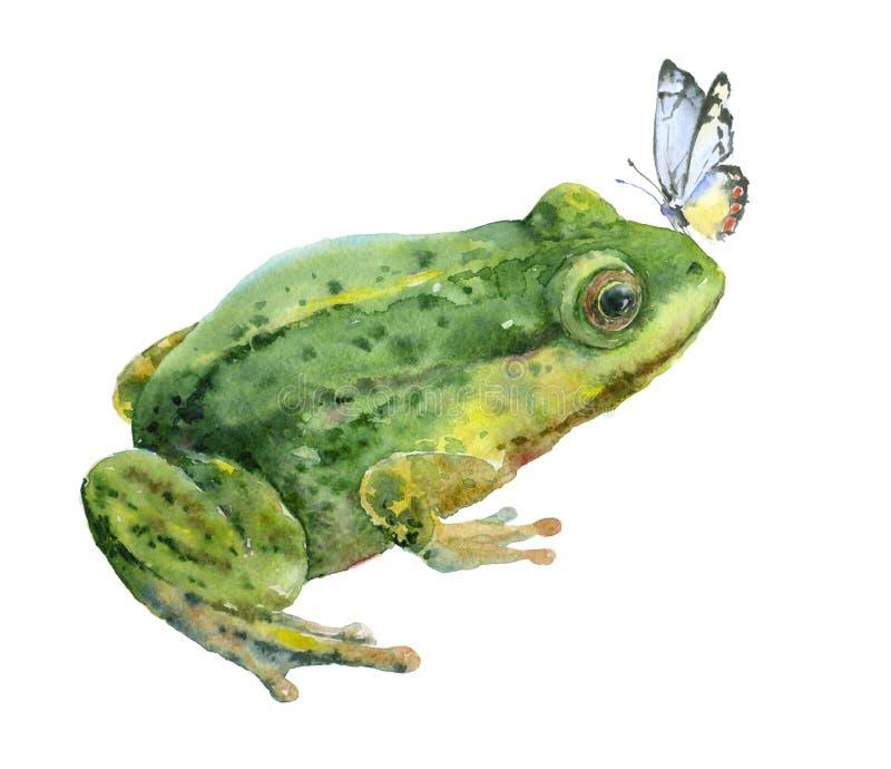 Grön groda för vattenfärg med den blåa fjärilen vektor illustrationer