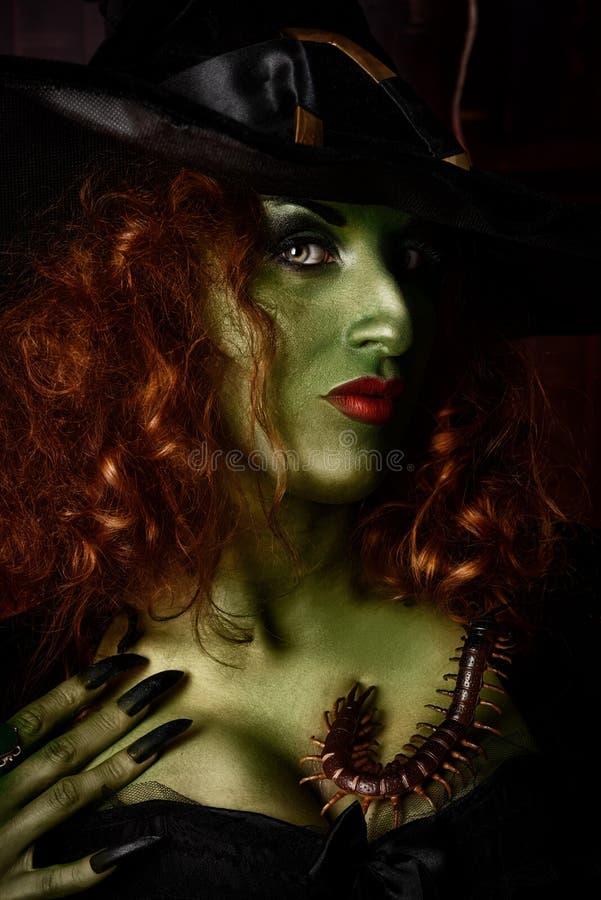grön häxa royaltyfri foto